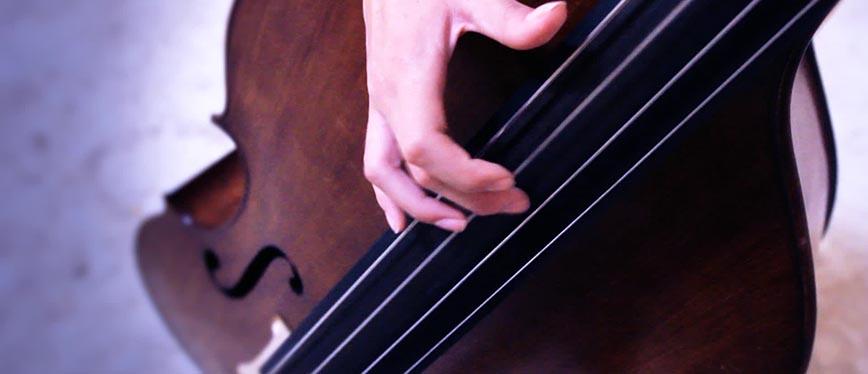 Contrabbasso Jazz
